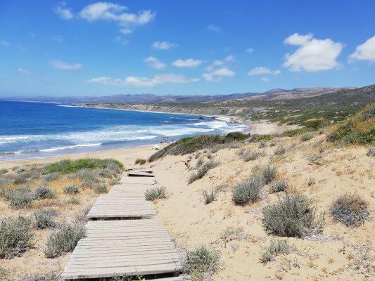 Kam s deťmi na výlet, ostrov Cyprus a moje odporúčania - Lara Bay pláž | Welcome Baby
